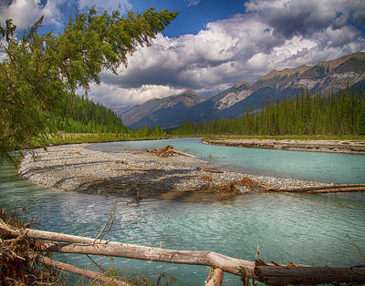 Photograph - Kootenai River with Leaning Fir by Brian Brandt