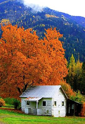 Wall Art - Photograph - Kootenay Autumn Shed by Bill Linn