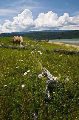 Kootenay Lake Photograph - Kootenay Country by Peter Olsen