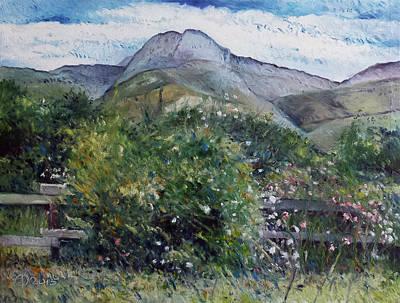Painting - Kopberg Heidelberg Western Cape South Africa by Enver Larney