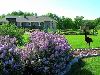 Korean Lilacs And Sandhill Crane Art Print by Randy Rosenberger