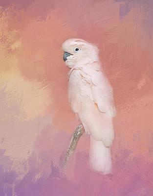 Photograph - Kramer The Moluccan Cockatoo by Theresa Tahara