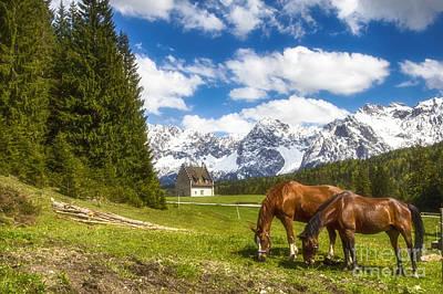 Photograph - Kranzbach by Fabian Roessler