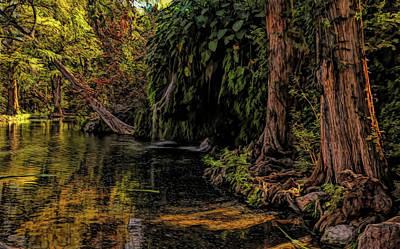 Photograph - Krause Springs Painted by Judy Vincent