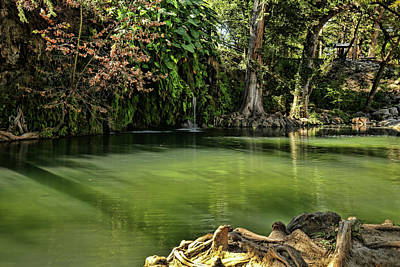 Photograph - Krause Springs Spicewood Texas by Judy Vincent