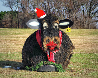 Photograph - Kris Kringle Cow by Bill Swartwout