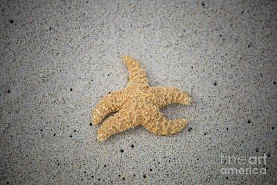 Photograph - Kua Bay 15 by Daniel Knighton