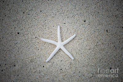 Photograph - Kua Bay 16 by Daniel Knighton