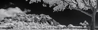 Infra-red Photograph - Kualoa Pods N Palms by Sean Davey