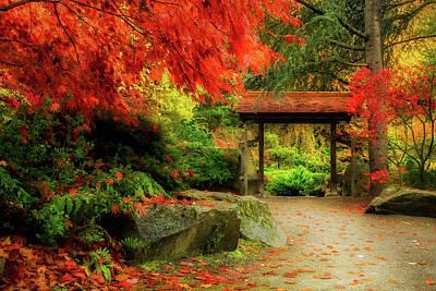 Photograph - Kubota Garden by Mihai Andritoiu