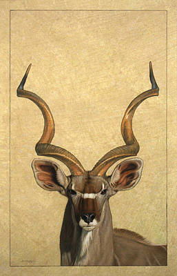 African Animals Drawing - Kudu by James W Johnson