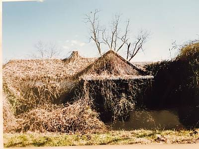 Photograph - Kudzu Kastle by Douglas Fromm