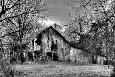 Photograph - Kudzu Covered Barn In The Mississippi Delta by T Lowry Wilson