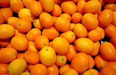 Photograph - Kumquats by Robert Meyers-Lussier