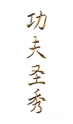 Digital Art - Kung Fu San Soo Chinese Characters Typography by Leah McPhail