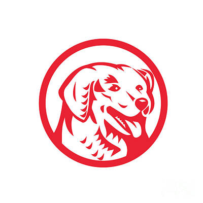 Dog Head Digital Art - Kuvasz Dog Head Circle Retro by Aloysius Patrimonio