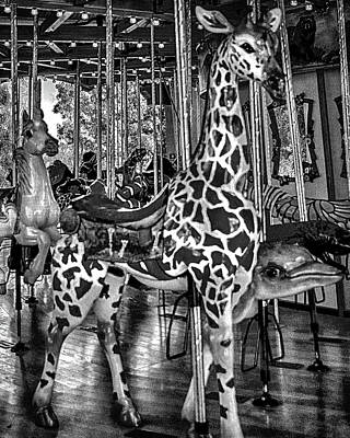 Photograph - L A Zoo Carousel B W by Joseph Hollingsworth