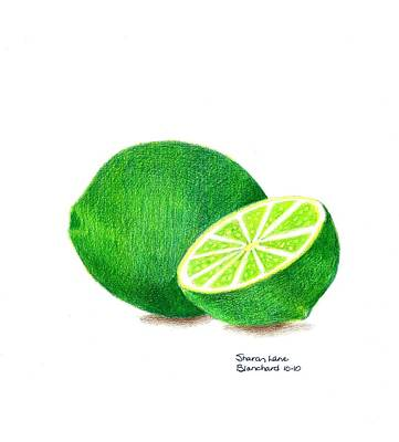 Lime Drawing - La Chaux by Sharon Blanchard