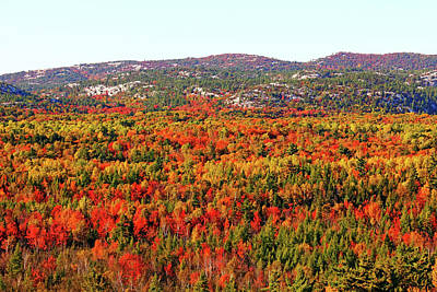 Photograph - La Cloche Mountains In Autumn by Debbie Oppermann
