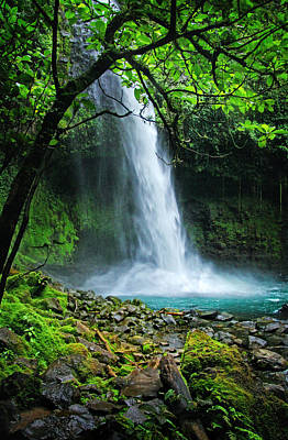 Photograph - La Fortuna Waterfall by Carolyn Derstine