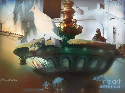 La Fuente De Ayamonte Art Print by Alfonso Garcia