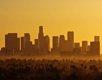 Photograph - L. A. Morning by Ron Dubin