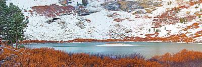 Mistletoe - La Nieve Cubrio Isla by Frank Henley