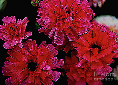 Photograph -  La Passion by Diana Mary Sharpton