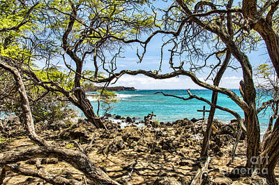 La Perouse Bay Views Art Print by Keith Ducker