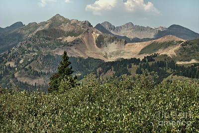 Photograph - La Plata Mountains by William Schlabach