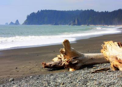 Rocky Digital Art - La Push Beach  by Carol Groenen