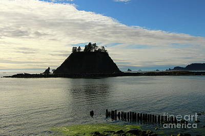 Photograph - La Push Beach  by Christiane Schulze Art And Photography