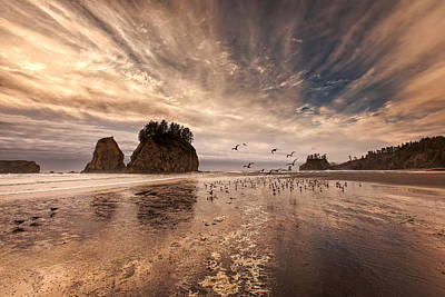 Photograph - La Push Sunset by Ian Good
