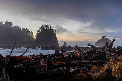 Washington Driftwood Beach Fog Wall Art - Photograph - La Push, Washington by Michael Holly