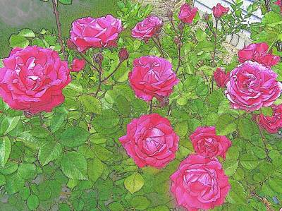 Photograph - La Vie En Roses by Jen White
