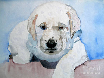 Painting - Lab Puppy by Sandy McIntire