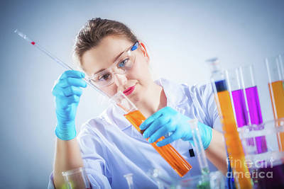 Photograph - Laboratory Worker Measures And Checks Liquid Substance. by Michal Bednarek