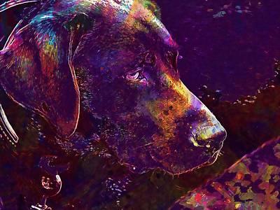 Labrador Digital Art - Labrador Dog Pet Dark Brown Head  by PixBreak Art