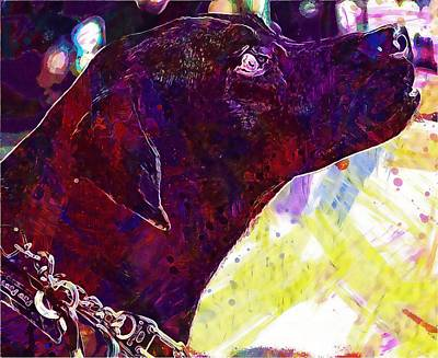 Labrador Digital Art - Labrador Dog Profile Black Canine  by PixBreak Art