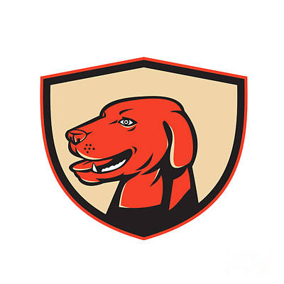 Retriever Digital Art - Labrador Golden Retriever Dog Head Shield Retro by Aloysius Patrimonio