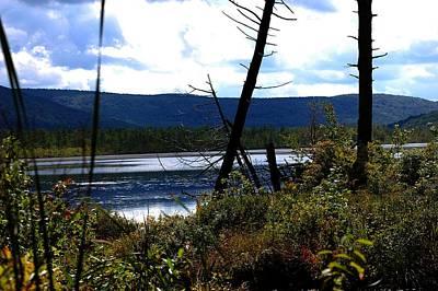 Photograph - Labrador Pond by David Lane
