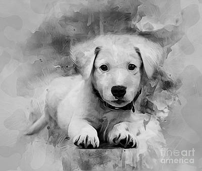 Digital Art - Labrador Puppy by Ian Mitchell