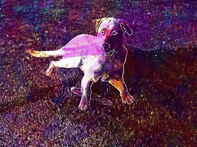 Labrador Digital Art - Labrador Retriever Dog Outdoors  by PixBreak Art