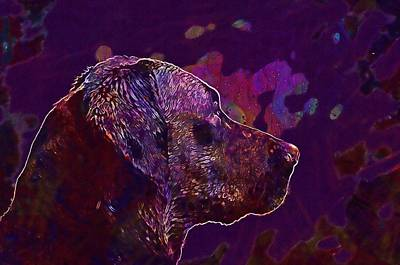 Labrador Digital Art - Labrador Retriever Kind Bird Hunting  by PixBreak Art