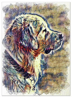 Digital Art - Labrador Retriever Profile by Kathy Kelly