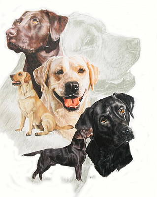 Sporting Mixed Media - Labrador Retriever W/ghost by Barbara Keith