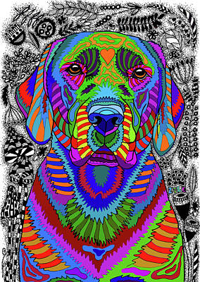 Drawing - Labrador Retriever by ZileArt