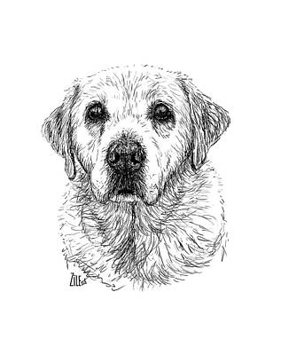 Digital Art - Labrador @the_lab_family by ZileArt