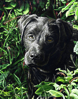 Black Lab Puppy Painting - Labradorable by Cara Bevan