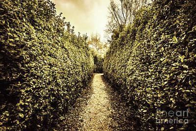 Passage Wall Art - Photograph - Labyrinth Lane by Jorgo Photography - Wall Art Gallery